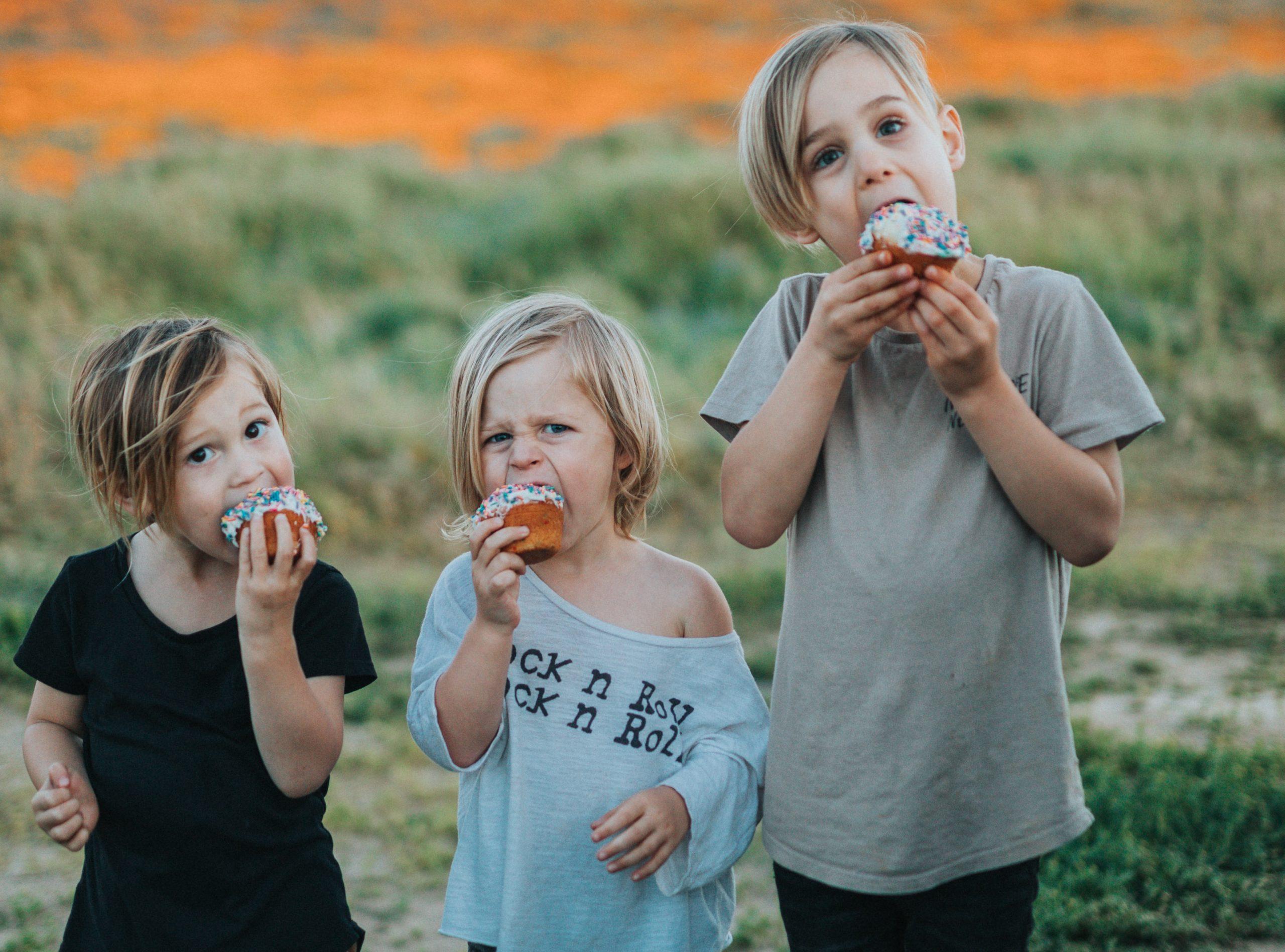 Rodiče mají jednoznačně ve svých rukou pravomoc rozhodovat o tom, co děti jedí, i když jsou samy doma. Nemůžeme po dětech chtít, aby si vybraly něco zdravého, když mají k dispozici hromadu nezdravých věcí.