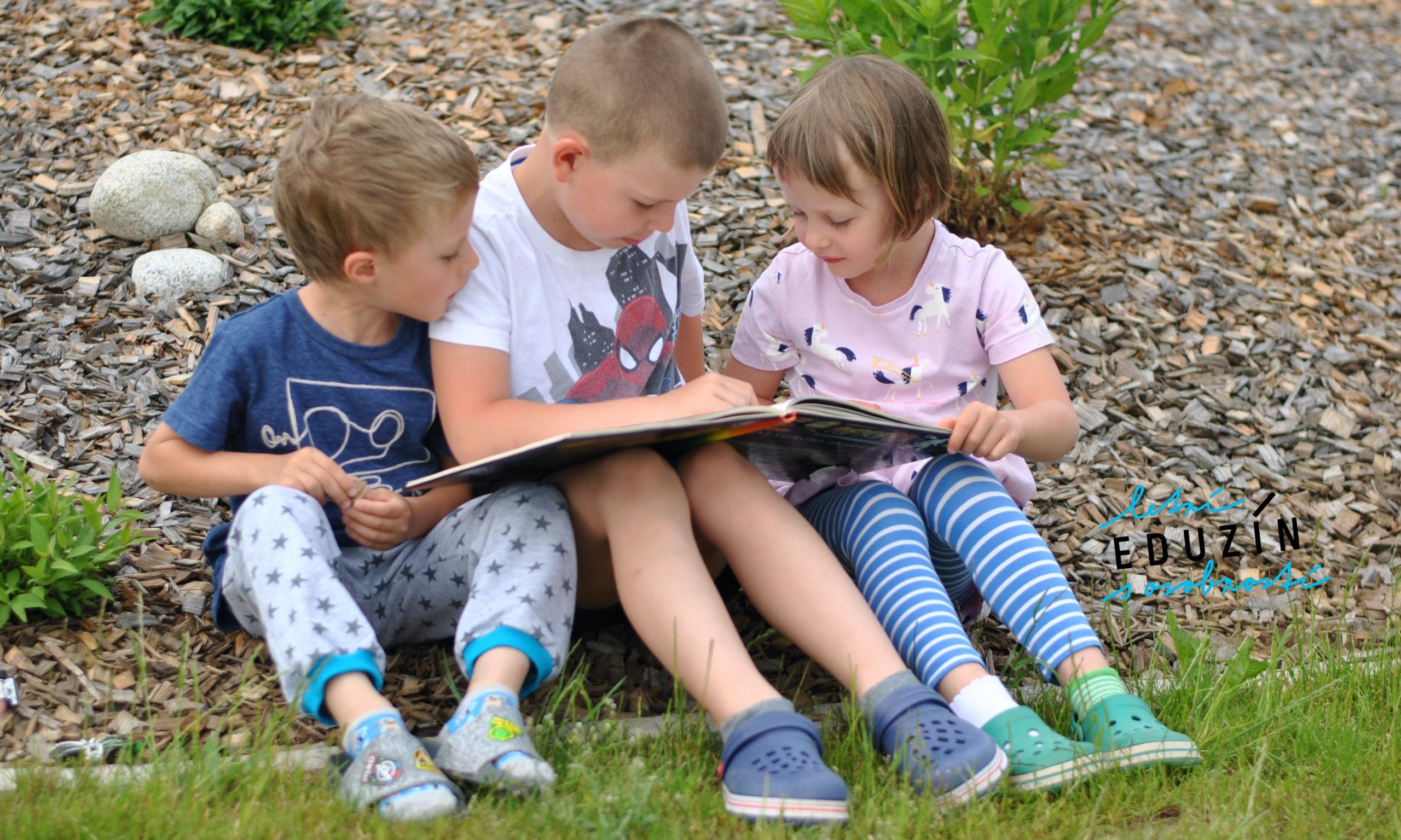 Stačí 4-6 přečtených knih za léto, aby hlava nezapomněla, jak přijímat informace ze čteného (či předčítaného) textu.